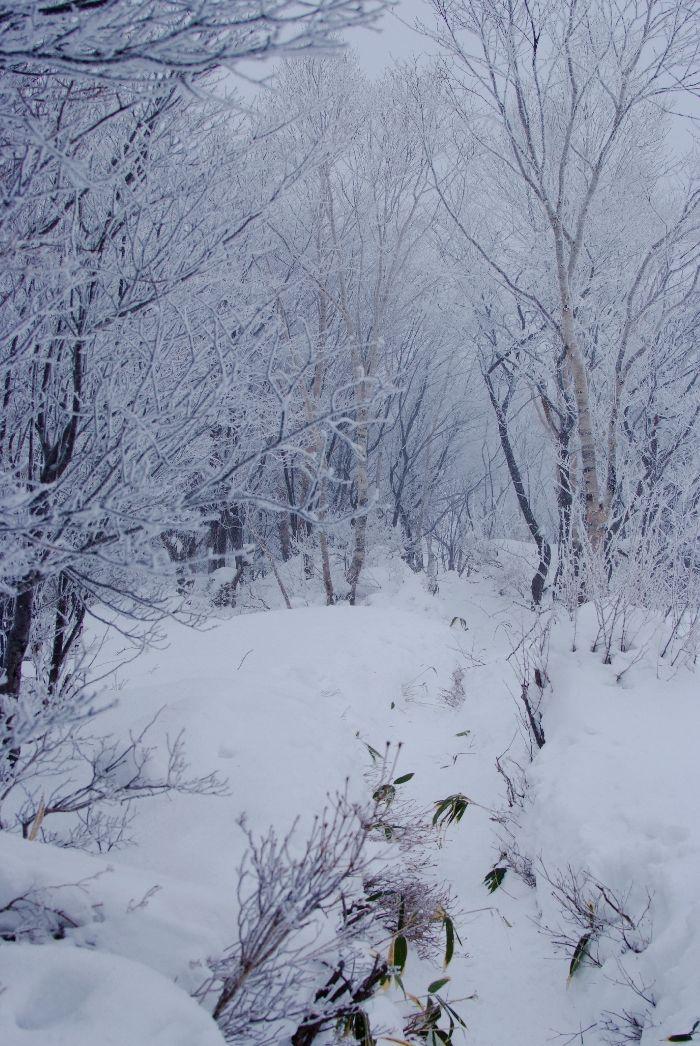 20140102 黒檜山.jpg